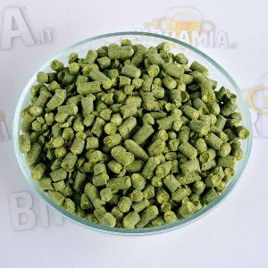 Luppolo Northern Brewer 250 g (Pellet)